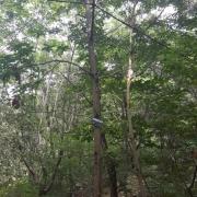 석모도 자연휴양림