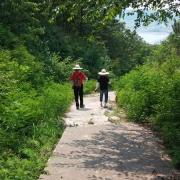 성지약수터 가는 길