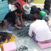구로지마을에서 만난 가무락 고르는 주민들