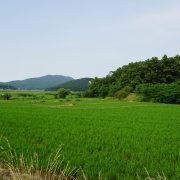 석포리 마을